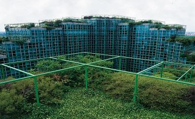 Das Gründach – die nachhaltige Zukunftsstrategie