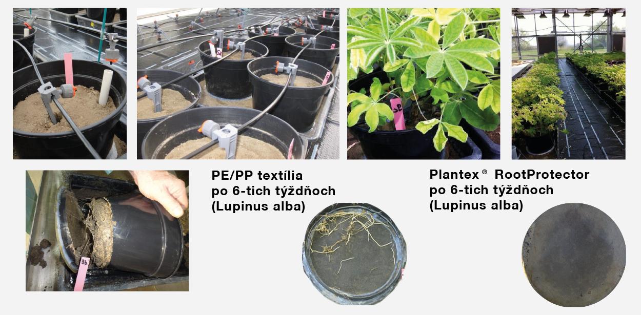 Plantex-RootProtector-test-proti-prerastaniu-korenov